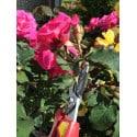 Sécateur cueille fleurs 21cm 120EUR ARS